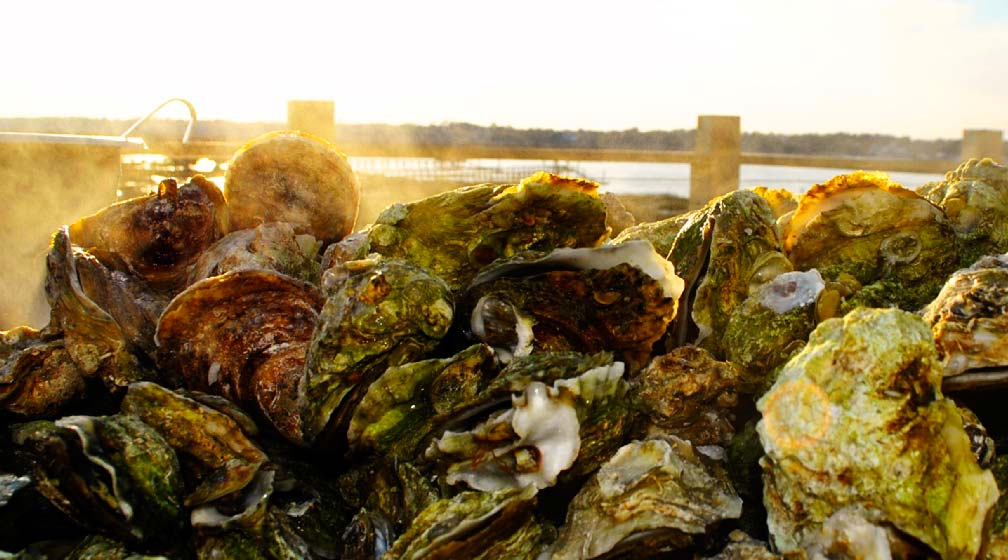 7 Best Seafood Restaurants Myrtle Beach Vacatia