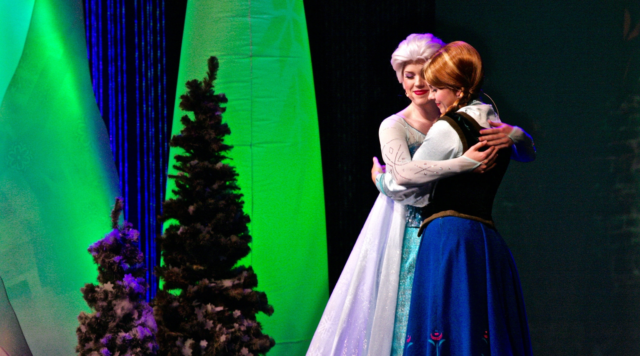 Meet Anna Amp Elsa At Disney World Vacatia
