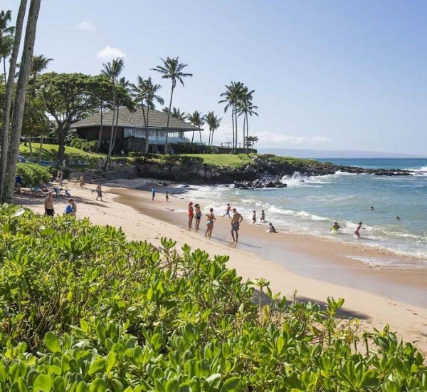 Why Spring is the Best Time to Visit Maui