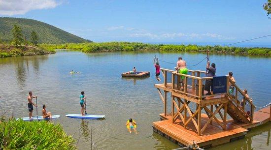 Zip line adventures: Maui adventure