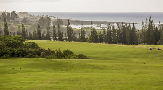 Maui Golf Couse: The Plantation Courese