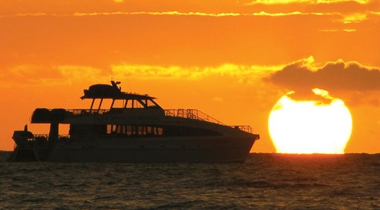 Pacific Whale: Sunset Dinner Cruise
