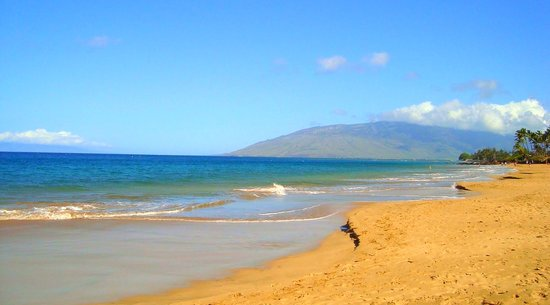 Kamaole Beach Park I: Local Maui Beach