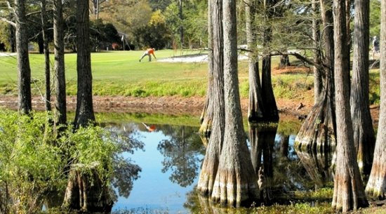 Eagle Nest Golf Club: Myrtle Beach Golf Course