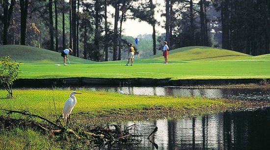 Possum Trot Golf Course: Myrtle Beach Golf Course