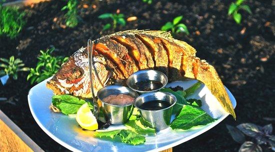 Bistro 217: Myrtle Beach Restaurant