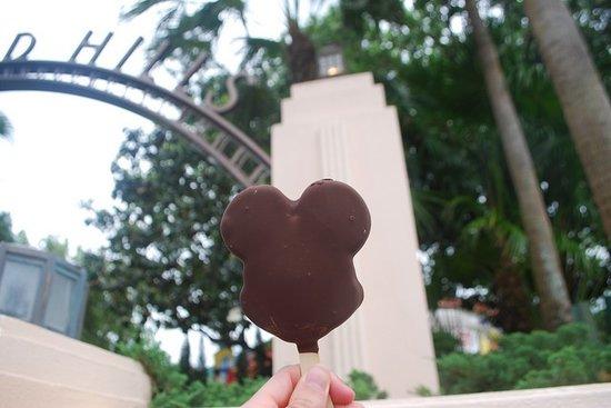 Mickey Mouse Ice Cream Bar at Disney World