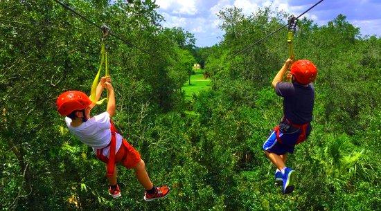 Zipline in Orlando, FL