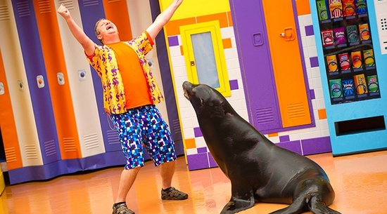 Sea Lion High with Clyde and Seamore: SeaWorld Show