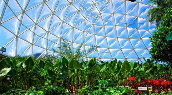 The Land Pavilion Geo-dome Greenhouse at Epcot