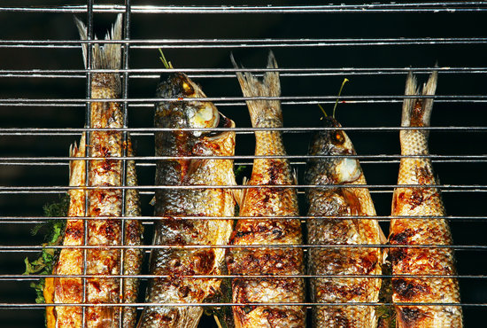 Grill Maui Fish