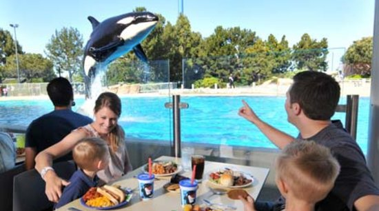 Dine with Shamu: SeaWorld Dinner Show