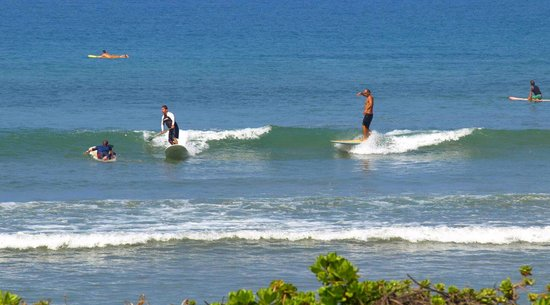 Stand Up Paddle on Maui: The Cove Park