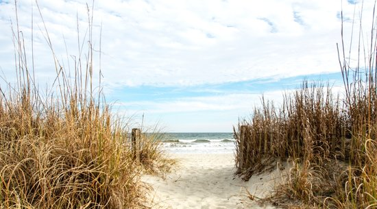Peppertree by the Sea: Myrtle Beach Resort