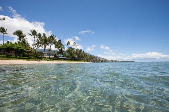 Baby Beach: Great Maui Beach for Kids