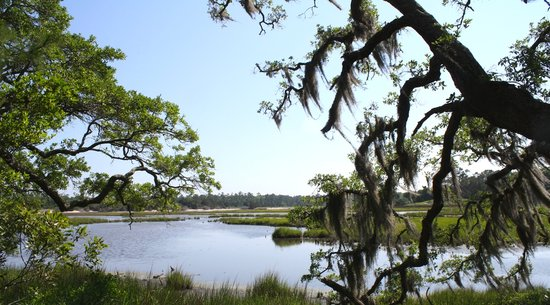Vereen Memorial Gardens: Myrtle Beach Nature Tours
