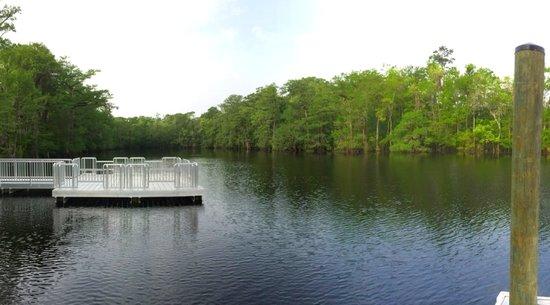 Cox Ferry Lake Recreation Center: Myrtle Beach Nature Tours