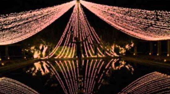 Brookgreen Gardens: Myrtle Beach Nature Tours