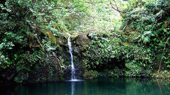 Makapipi Falls Maui Waterfalls