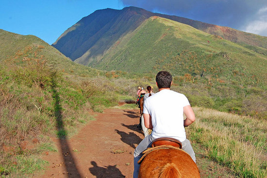 Horseback Riding Maui: Maui Excursions