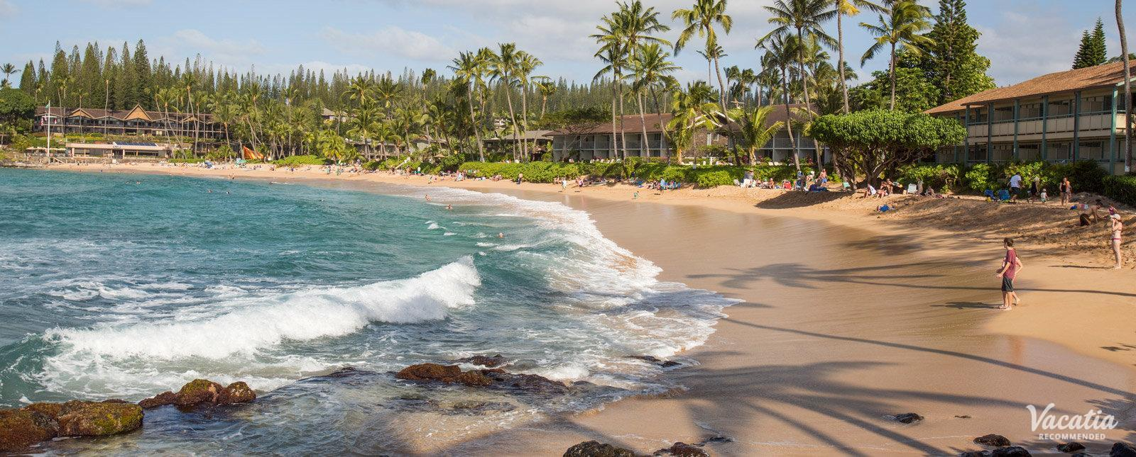 Napili Shores Maui by Outrigger favorite snorkeling spot