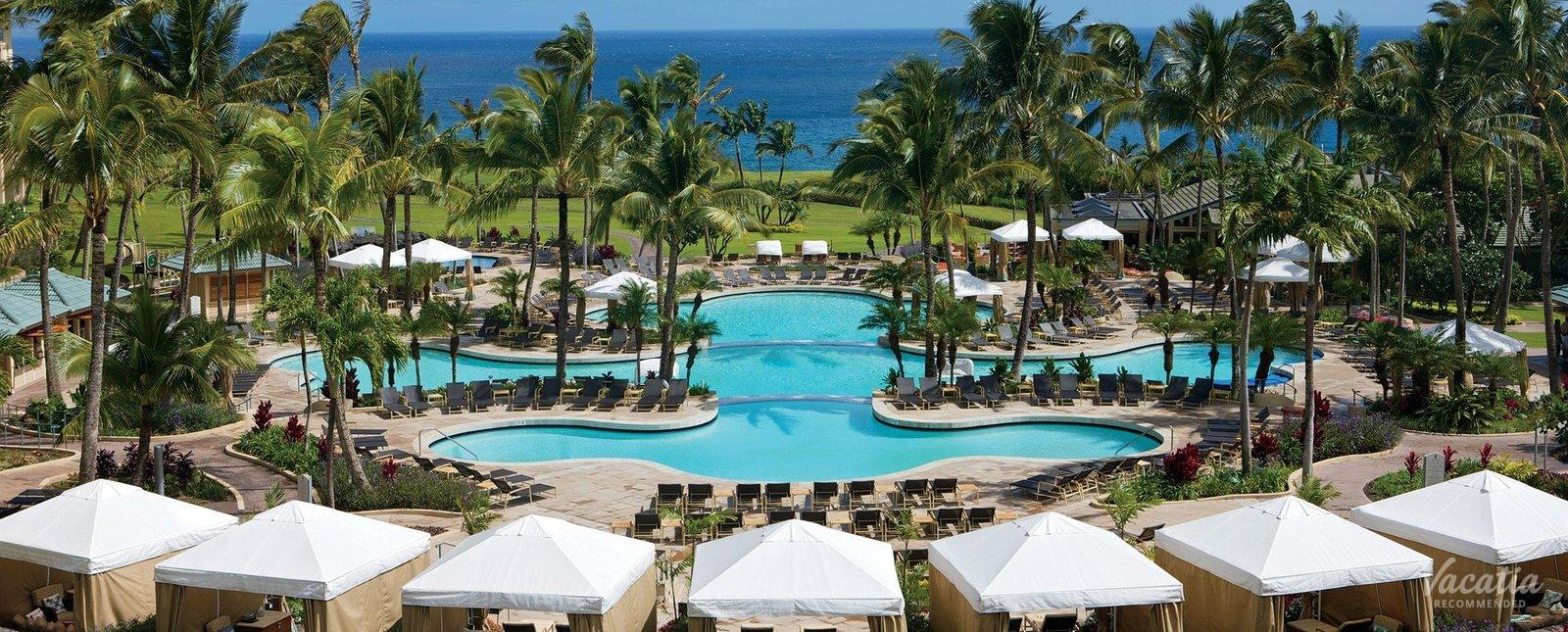 Ritz Carlton Kapalua Pool
